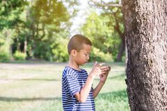 Junger netter asiatischer Junge, der einen Smartphone verwendet, um Spiel zu spielen Stockfoto