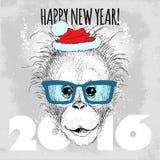 Junger Orang-Utan Affe Hippie mit blauen Gläsern und Weihnachtshut Lizenzfreie Stockbilder