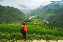 Junger Reisender, der Ansicht der Natur steht und betrachtet stockfotografie