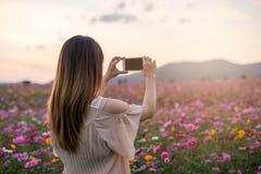 Junger Reisender, der blühende Blumen des Fotos nimmt lizenzfreies stockbild