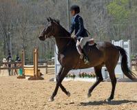 Junger Reiter Lizenzfreies Stockbild