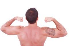 Junger reizvoller Mann, der seinen zweiköpfigen Muskel getrennt auf Whit zeigt Stockfotos