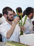 Junger religiöser Mann wählt Ritualmyrte - adas Stockfoto
