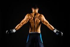 Junger starker Boxer mit Boxhandschuhen Stockfotos