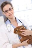 Junger Tierarzt mit nettem Patienten stockfotografie