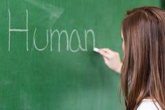 Junger Unterricht des weiblichen Lehrers im Biologieunterricht Lehrer, der menschlichen Körper auf Tafel schreibt Lizenzfreie Stockbilder