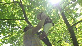 Junger Vateraufzug und glückliches Babytochtermädchen unter Tulpenbaum küssen 4K stock video footage