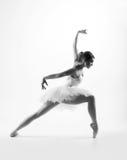 Junger weiblicher Balletttänzer auf Grau Stockbild