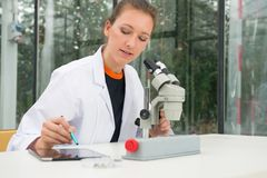 Junger weiblicher Forscher, der Mikroskop und digitale Tablette an t verwendet Lizenzfreie Stockfotografie