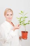 Junger weiblicher Wissenschaftler mit Grünpflanze Stockbild