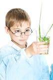 Junger Wissenschaftler Lizenzfreies Stockfoto