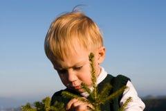 Junger Zoologe Lizenzfreies Stockfoto