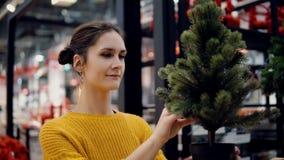 Junges attraktives Brunettemädchen wählt im Geschäft einen künstlichen Weihnachtsbaum, Weihnachtsdekoration Stockfoto