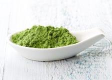 Junges Gersten- oder Weizengras Detox superfood Lizenzfreies Stockbild