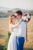 Junges glückliches gerade verheiratetes Paar, das auf die Oberseite des Berges aufwirft Stockbild