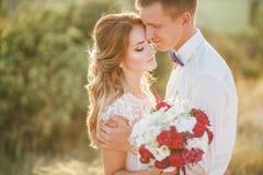 Junges glückliches gerade verheiratetes Paar, das auf die Oberseite des Berges aufwirft Stockfoto