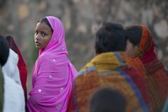 Junges indisches Mädchen, das einen pinkfarbenen Sari trägt Stockbild