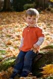 Junges Jungenlächeln Lizenzfreie Stockfotografie