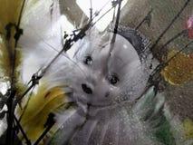 Junges K?ken in Wanne, 2 malte Eier und Blumen Eine traurige Pierrotporzellanpuppe unter Zweigen und Federn lizenzfreies stockfoto
