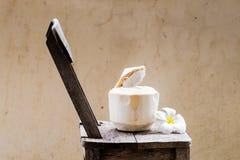 Junges Kokosnusswasser Lizenzfreies Stockbild