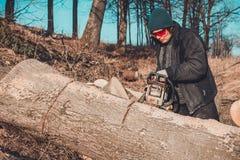 Junges ländliches Mädchen schnitt eine Baumkettensäge in den Handschuhen, Kochbrennholz für Winter stockfotografie
