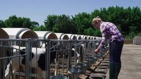 Junges Mädchen auf dem Bauernhof stock footage