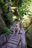 Junges Mädchen auf hölzerner Treppe, Felsen-Stadtpark, Adrspach Teplice, Tschechische Republik Stockfotos