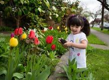 Junges Mädchen, das ein Foto von Tulpen macht Stockbilder
