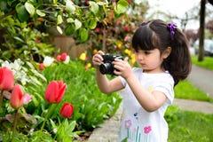 Junges Mädchen, das ein Foto von Tulpen macht Lizenzfreies Stockbild