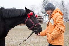 Junges Mädchen, das ein Pferd einzieht Stockfoto