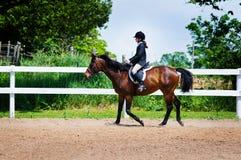 Junges Mädchen, das ein Pferd reitet stockfoto