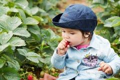 Junges Mädchen, das Erdbeere isst Lizenzfreies Stockfoto
