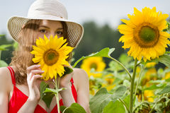 Junges Mädchen in den Sonnenblumen Stockfoto