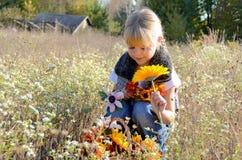 Junges Mädchen in der Wiese mit Herbstblumen Stockfotografie