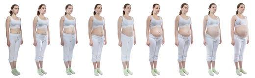 Junges Mädchen des Fotos während der Schwangerschaft mit dem bloßen Bauch Stockbild