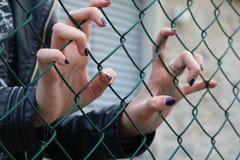 Junges Mädchen eingeschlossen hinter grünem Maschendrahtzaun Lizenzfreie Stockbilder