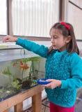 Junges Mädchen-Fütterungsgoldfisch stockbilder