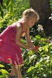 Junges Mädchen-Gartenarbeit Lizenzfreie Stockfotos