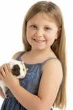 Junges Mädchen-Holding-Haustier-Meerschweinchen Lizenzfreies Stockbild