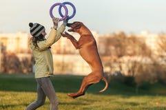 Junges Mädchen im gelben Mantel, der mit dem springenden Hunde-ridgeback und -abziehvorrichtungen in der Herbstzeit spielt Lizenzfreies Stockbild