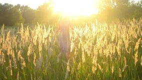 Junges Mädchen läuft über das Feld mit hohem trockenem Gras stock footage