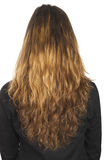 Junges Mädchen mit dem langen Haar Lizenzfreies Stockbild