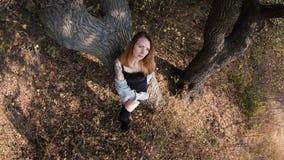 Junges Mädchen mit dem roten Haar auf einem Gebiet Stockfotos