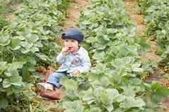 Junges Mädchen mit Erdbeere Lizenzfreie Stockfotos