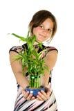 Junges Mädchen mit Hauptbetriebsbam lizenzfreie stockbilder
