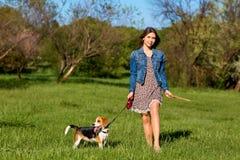 Junges Mädchen mit ihrem Hund, der im Park spielt stockbilder