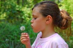 Junges Mädchen mit Löwenzahn Stockfotografie