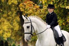 Junges Mädchen mit weißem Dressurreitenpferd Stockbild