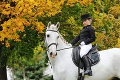 Junges Mädchen mit weißem Dressurreitenpferd Stockbilder