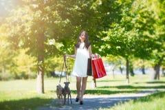 Junges Mädchen mit zwei Windhunden im Park mit Einkaufstaschen Stockbild